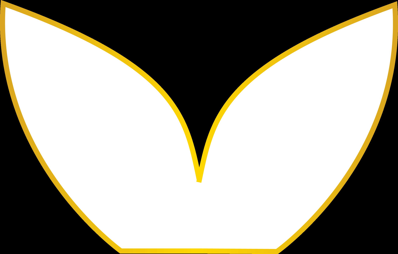 lisa brandao naturopathe tarbes logo lotus 4