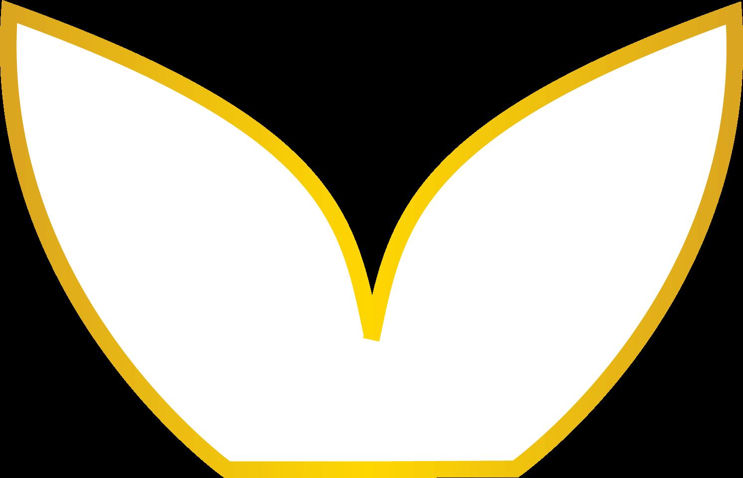 lisa brandao naturopathe tarbes logo lotus 1